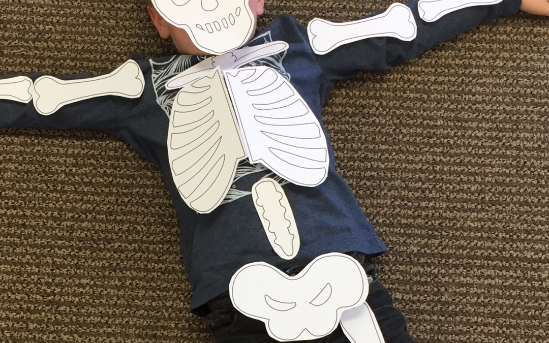 Skeleton Puzzle Perfect for Halloween Anatomy Class